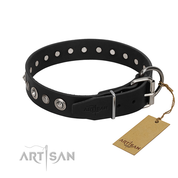 Durable natural leather dog collar with exceptional embellishments