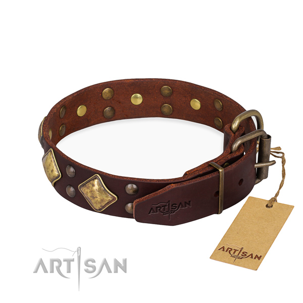 Full grain genuine leather dog collar with stylish design rust resistant adornments
