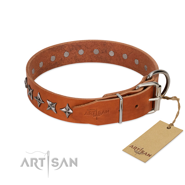 Walking embellished dog collar of reliable genuine leather
