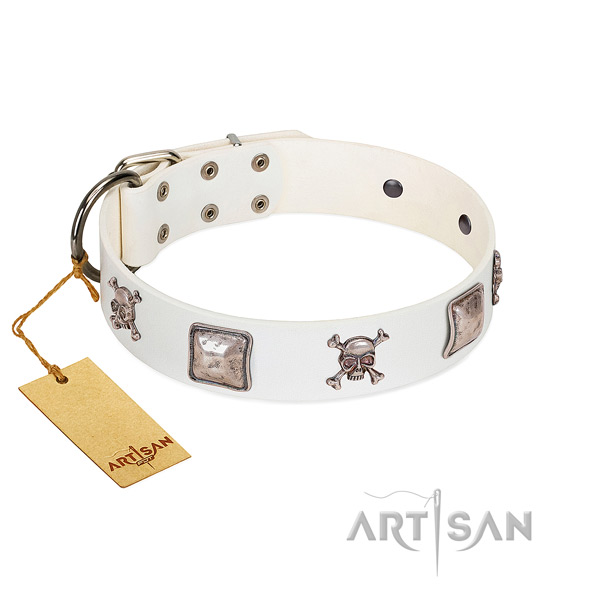 Adorned dog collar handcrafted for your beautiful doggie