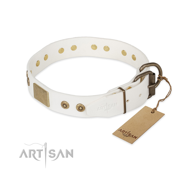 Full grain natural leather dog collar with corrosion proof fittings and embellishments