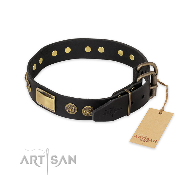 Rust-proof fittings on leather collar for everyday walking your pet