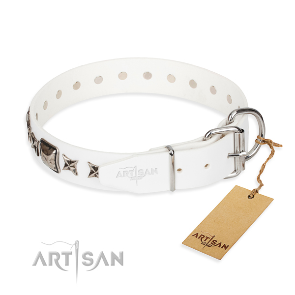 Top notch studded dog collar of natural leather
