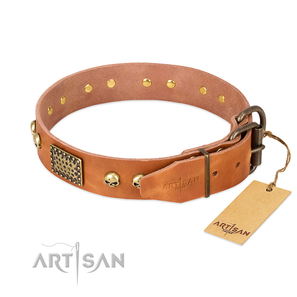 Reliable adornments on easy wearing dog collar