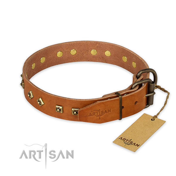 Rust-proof buckle on natural leather collar for daily walking your four-legged friend