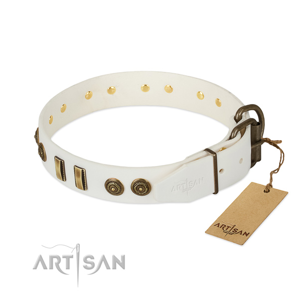 Reliable adornments on natural leather dog collar for your canine