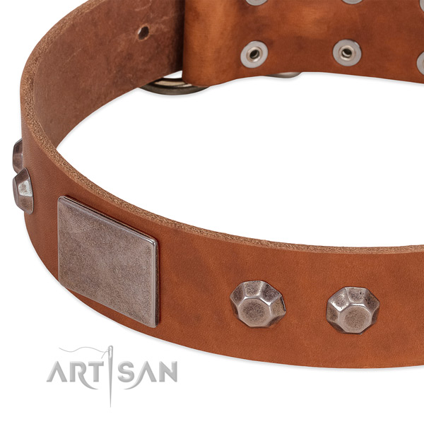 Everyday use soft leather dog collar