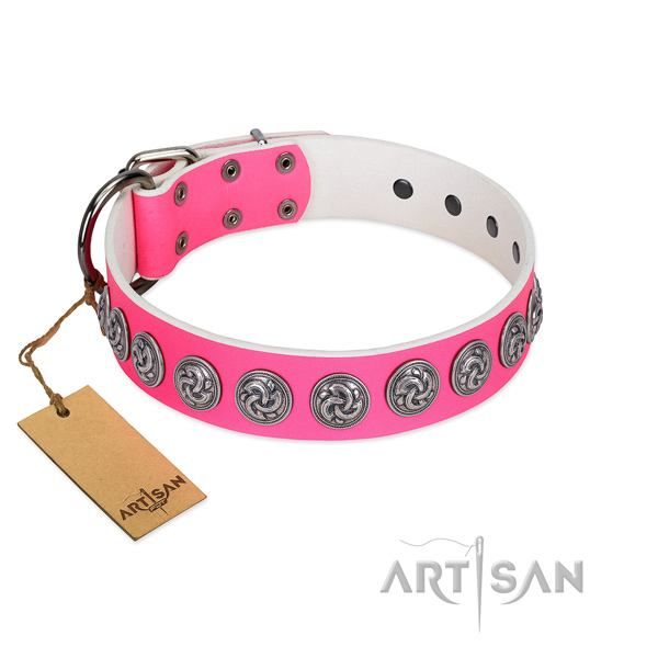 Flexible full grain leather dog collar for your stylish canine
