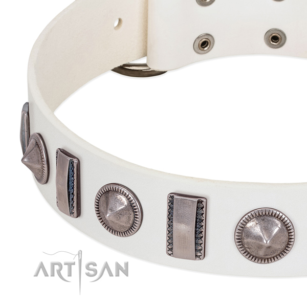 Impressive studded full grain natural leather dog collar for stylish walking