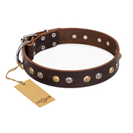 """Rare Flower"" FDT Artisan Brown Leather dog Collar Adorned with Old-look Hemisphere Studs"