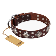"""King of Grace"" FDT Artisan Stylish Leather dog Collar with Old Silver-Like Plated Decorations"