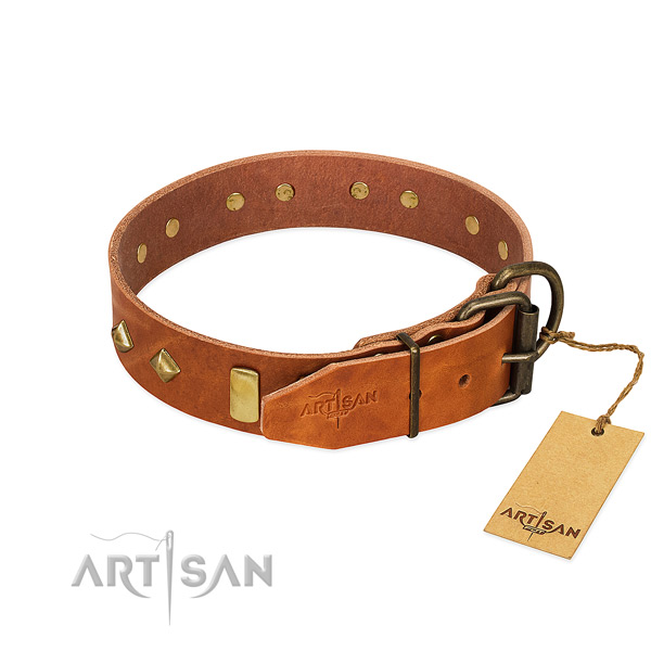 Everyday use genuine leather dog collar with unique studs