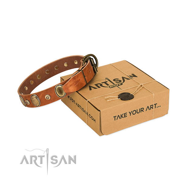 Soft full grain leather collar handcrafted for your pet