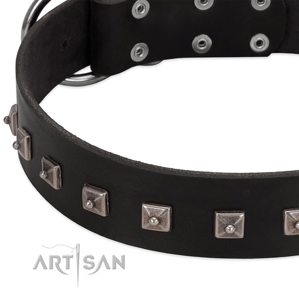 Soft full grain leather collar with embellishments for your four-legged friend