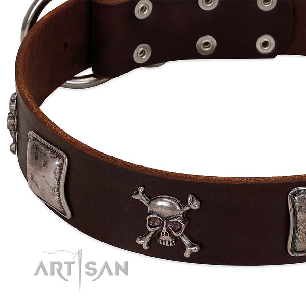 Rust resistant fittings on full grain leather dog collar