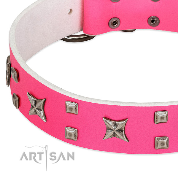 Remarkable genuine leather collar for your doggie stylish walks