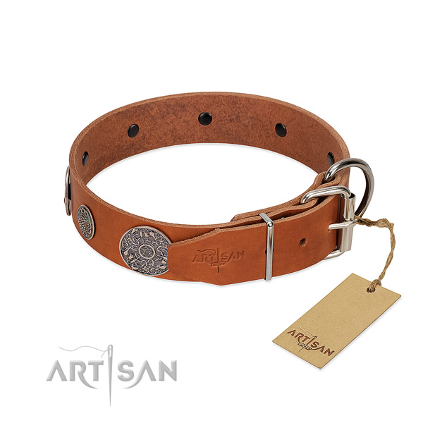 Unique natural genuine leather collar for your stylish canine