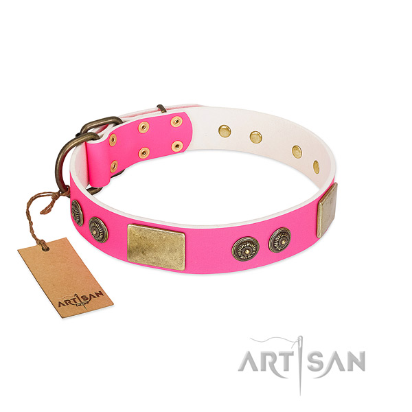 Extraordinary full grain natural leather dog collar for daily use