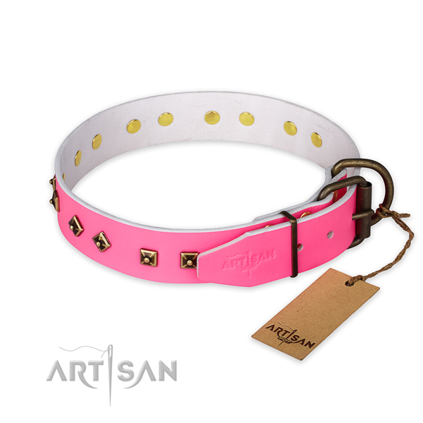 Rust resistant fittings on full grain natural leather collar for stylish walking your dog