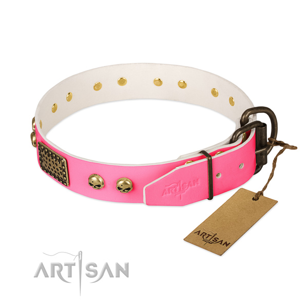 Rust resistant fittings on walking dog collar