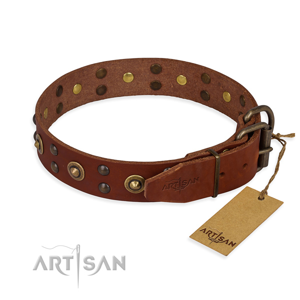 Reliable D-ring on genuine leather collar for your beautiful doggie