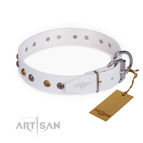 Full grain natural leather dog collar with top notch rust-proof studs