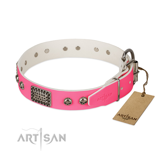 Durable traditional buckle on everyday use dog collar
