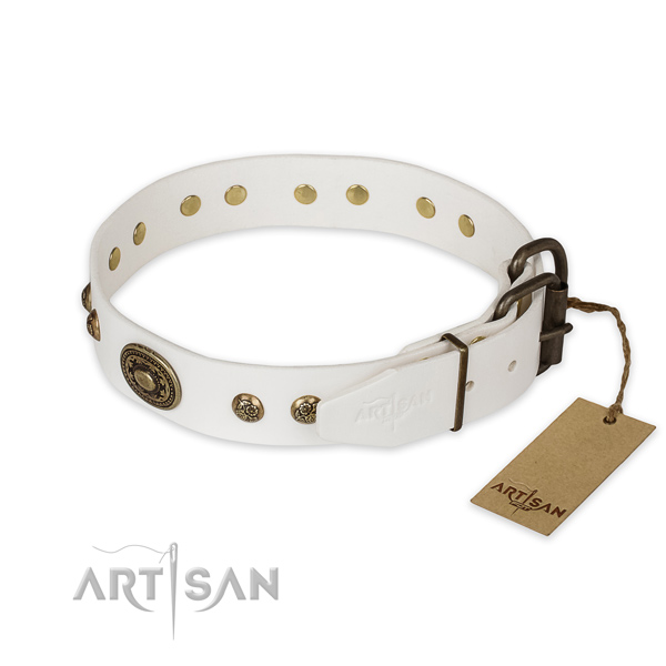 Rust resistant D-ring on full grain natural leather collar for basic training your canine