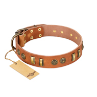 """Natural Beauty"" FDT Artisan Tan Leather dog Collar with Old Bronze-like Circles and Plates"