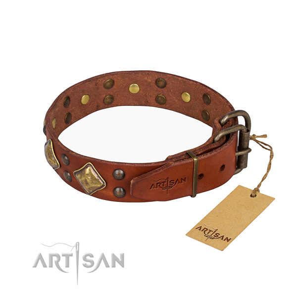 Leather dog collar with unusual reliable adornments