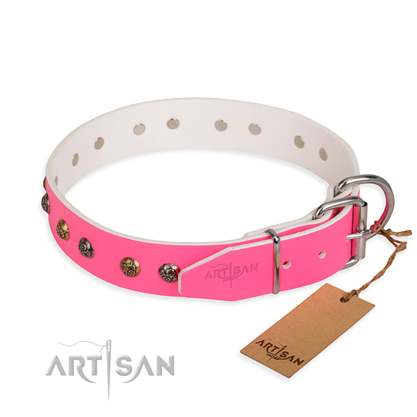 Leather dog collar with stylish strong embellishments