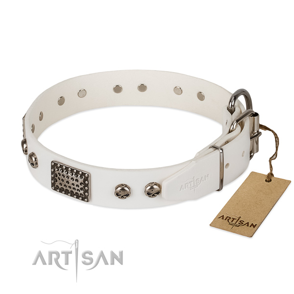 Corrosion resistant D-ring on everyday use dog collar