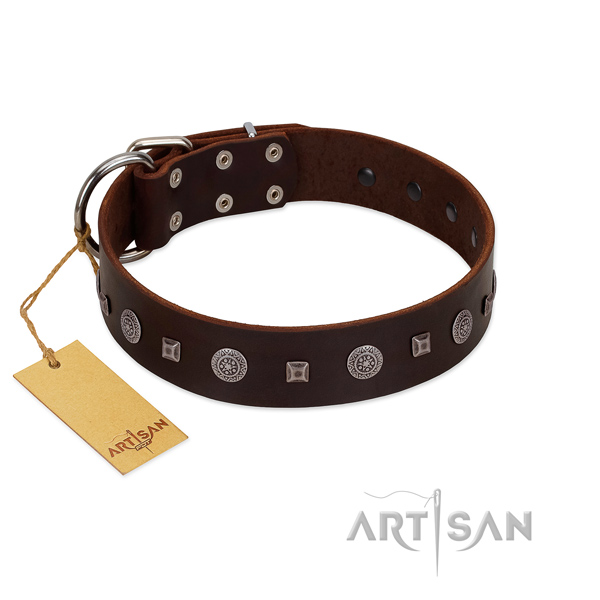 Comfy wearing top rate full grain natural leather dog collar with studs