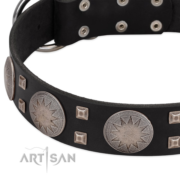 Comfortable wearing full grain natural leather dog collar