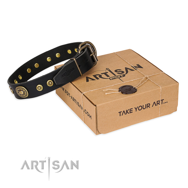 Full grain natural leather dog collar made of flexible material with corrosion proof traditional buckle