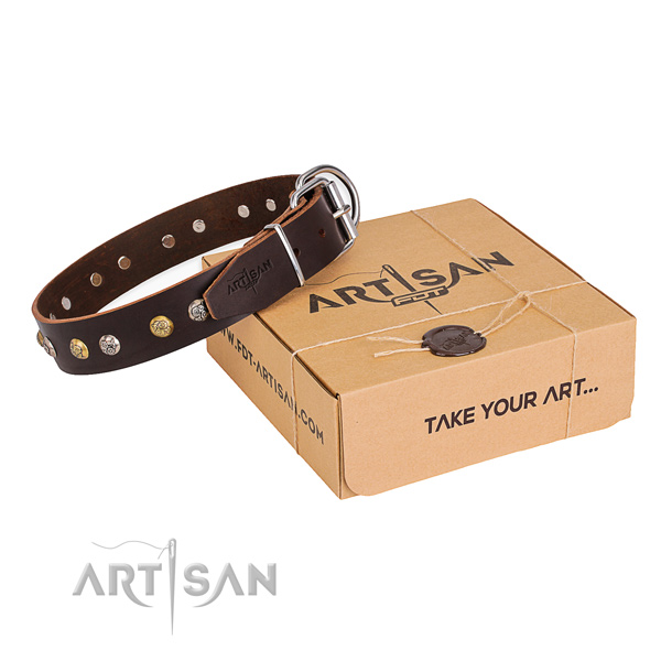 Top notch full grain leather dog collar handcrafted for fancy walking