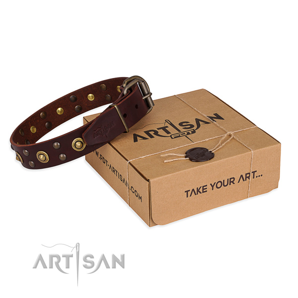 Corrosion proof fittings on genuine leather collar for your handsome dog