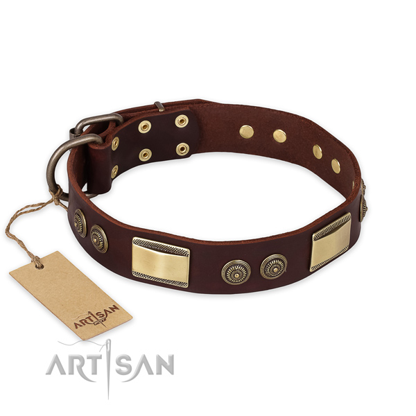 Decorated full grain leather dog collar for fancy walking