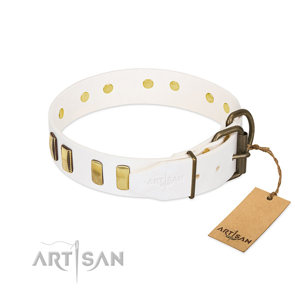 Quality genuine leather dog collar with reliable hardware