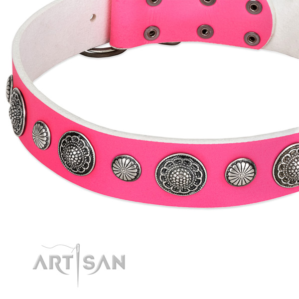 Full grain natural leather collar with durable fittings for your lovely canine