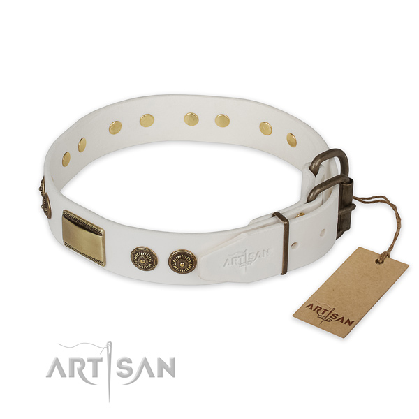 Rust resistant buckle on leather collar for daily walking your canine