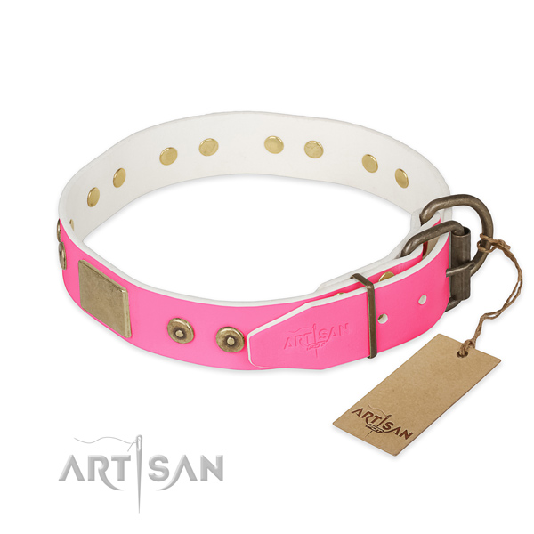 Strong studs on daily walking dog collar