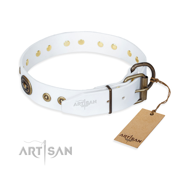 Full grain leather dog collar made of top notch material with corrosion proof adornments