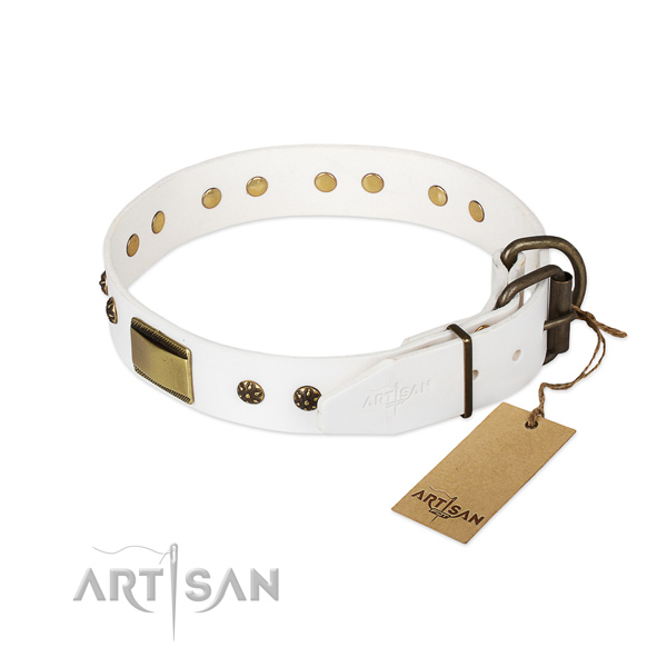 Full grain natural leather dog collar with reliable fittings and adornments