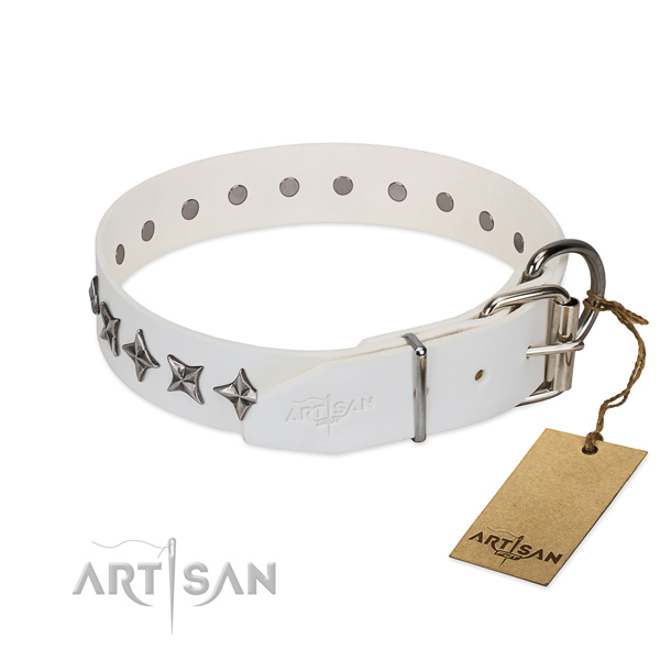 Comfortable wearing decorated dog collar of finest quality full grain natural leather