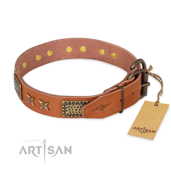 Corrosion proof hardware on full grain leather collar for your attractive four-legged friend