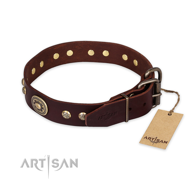 Rust-proof buckle on full grain natural leather collar for stylish walking your dog