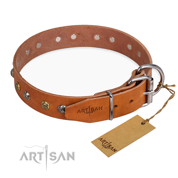 Full grain leather dog collar with stunning rust resistant adornments