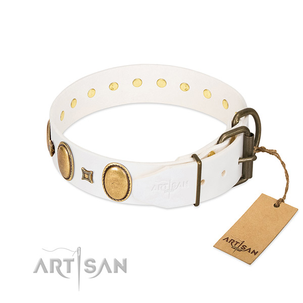 Rust-proof decorations on daily walking dog collar