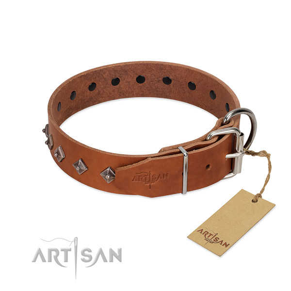 Natural leather dog collar with inimitable embellishments for your dog
